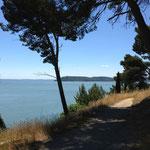 Le GR suit le littoral de la mer de Berre
