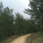 Le mont Puget dans la brume