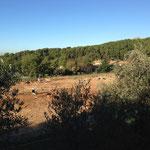 Un chantier de construction retardé par des fouilles archéologiques