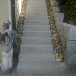 Neuer Treppenaufgang Kestenholz 2014