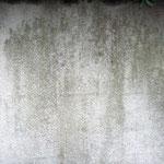 壁塗膜捲れ