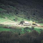 On the way to Calzada de Béjar