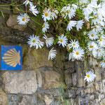 Camino signpost at Santiago del Monte