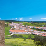 View from Castillo El Real de la Jara