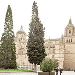 New and old Cathedral of Salamanca