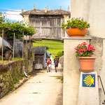 Pilgrims way in Grove near Mondoñedo