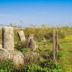 Remains of Roman milestones on the way