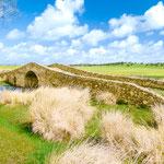 Roman bridge on the way to Aldea del Cano