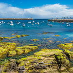 Colorful reef at Castro Urdiales' beach