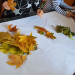 Blätter nach Farben sortierten