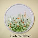 Gartenlaufkäfer