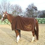Monas mit seiner neuen Decke
