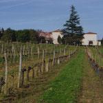 Domaine viticole de Naudonnet