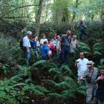 """Les visiteurs dans une des dolines (ou """"clotes"""") du bois de Restey"""