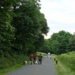 Battue aux renards dans le Bois du Hayas (printemps 2010)