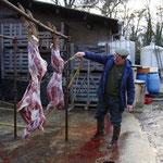 Battue aux chevreuils en février 2010 (Jean-Claude François nettoyant le gibier)