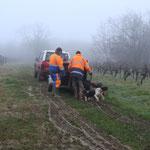 Arrivée des chiens courants à Reygnac