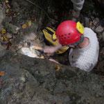 Richard Maire dégageant des huîtres de la couche calcaire.