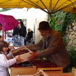 Le matin, vente de cerises sous la pluie.