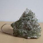 "Maske 7 ""Breath the roots"" von SARA GHALANDARI, 2020, Stoffnetz, , Chiasamen, Unikat"