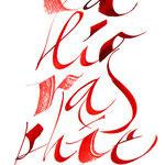 Calligraphie improvisée - © Serge Cortesi