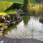 Entspannung am Gartenteich