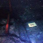 Vue sous marine. Vision de la constrution