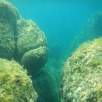 Die Unterwasserwelt im Mittelmeer. Mitsegeln auf eine Segelyacht zwischen Korsika und Sardinien