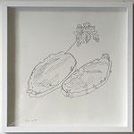 """Eva Hradil """"2 Brote wie Boote oder Inseln"""", 2017, Bleistift auf Papier, 30 x 30 cm"""
