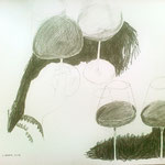 "Eva Hradil ""Rotweinglaeser Variante 2"" 2014 Bleistift auf Papier, 40 x 50 cm"