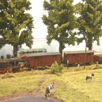 Ein Güterzug mit umgebauten MT-Wagen bei der MTSE.