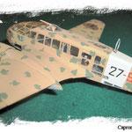 Caproni Ca313