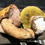Tylopilus felleus e Boletus edulis a confronto - S.M. di Castrozza agosto 2011