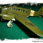 Caproni Ca314