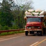 Truck mit Yerba Mate