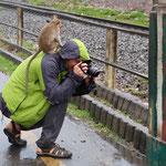 Nicht nur wir besuchen die Affen, sonder es kann auch umgekehrt passieren!