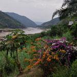 Aussicht aus unserer Lodge in Pak Beng auf den Mekong