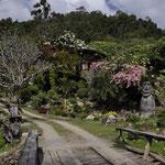 Parkanlage in den Bergen von Chian Mai