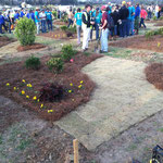 Student Landscape Competition