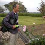 「桃香」 (2003年作出)2014年10月31日 花菜ガーデン「風ぐるま迷図」にて