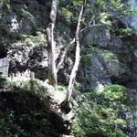 滝の周辺にも石仏が