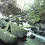 涼しげな音を立てて流れる抜井川