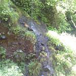 一筋落ちる水の流れ