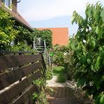 Gartensüdseite