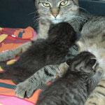 Das bin ich mit meinen Babys auf der Pflegestation 10.2011