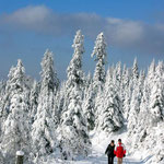 """© Fotograf: Paul Gerhardt-Koch, Titel: """"Winter-Hoch"""", Quelle: www.piqs.de"""