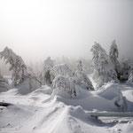 """© Fotograf: Marc Neugebauer, Titel: """"Schnee"""", Quelle: www.pixelio.de"""