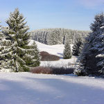 """© Fotograf: Sybille Daden, Titel: """"Winter 2007"""", Quelle: www.pixelio.de"""