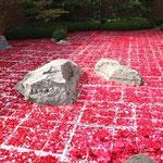 花海 笠岡市市制60周年記念 竹喬美術館
