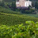 19. September: Schloss Korb befindet sich etwa 20 Minuten Fußweg vom Bauernhof Ohnewein entfernt. Das Bild ist in unserem Weinberg geschossen worden.